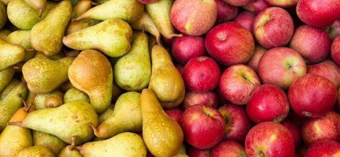 Minder appelen en meer peren dan vorig jaar https://t.co/MhaN4TnNUi https://t.co/doRUqokc2s