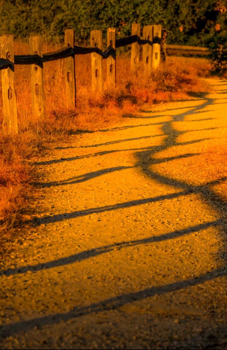 Golden Hour... #LandscapeLovers #BeautifulLandscape #Viewpoint #NakedPlanet #AwesomeGlobe #IGRefined #Earthescope #landscapephotography #landscape #nature #naturephotography #naturelovers #naturepic #landscapelovers #richardgreenla  #topangacanyon #malibu #goldenhourphotographypic.twitter.com/qFeT5nmhAn