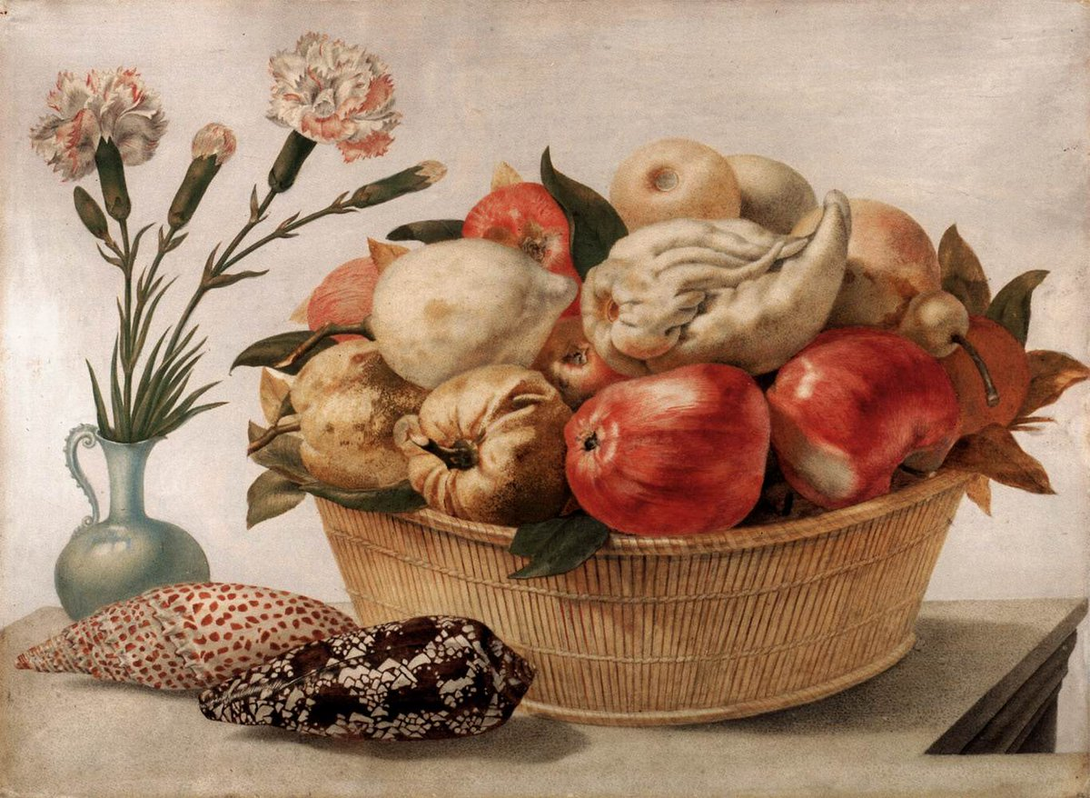 #ArtoftheDay by Giovanna Garzoni (1600–1670)  #art #artist #artists #fineart #arthistory #italianart #baroque #baroqueart #painter #painting #paintings #paintingoftheday #pictureoftheday #stilllifepic.twitter.com/PWcgiAwfFW