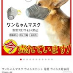 実は危険!?今売れているという犬用マスクにご注意を!