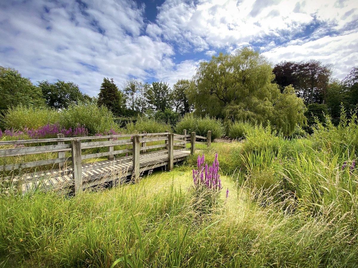 Rushen Abbey last Saturday. #isleofman #iom #visitisleofman #sunnydays #rushenabbey #nature #garden #landscapephotography #Staycation2020 #medieval #tower #blueskiespic.twitter.com/DdZ60KmaB1