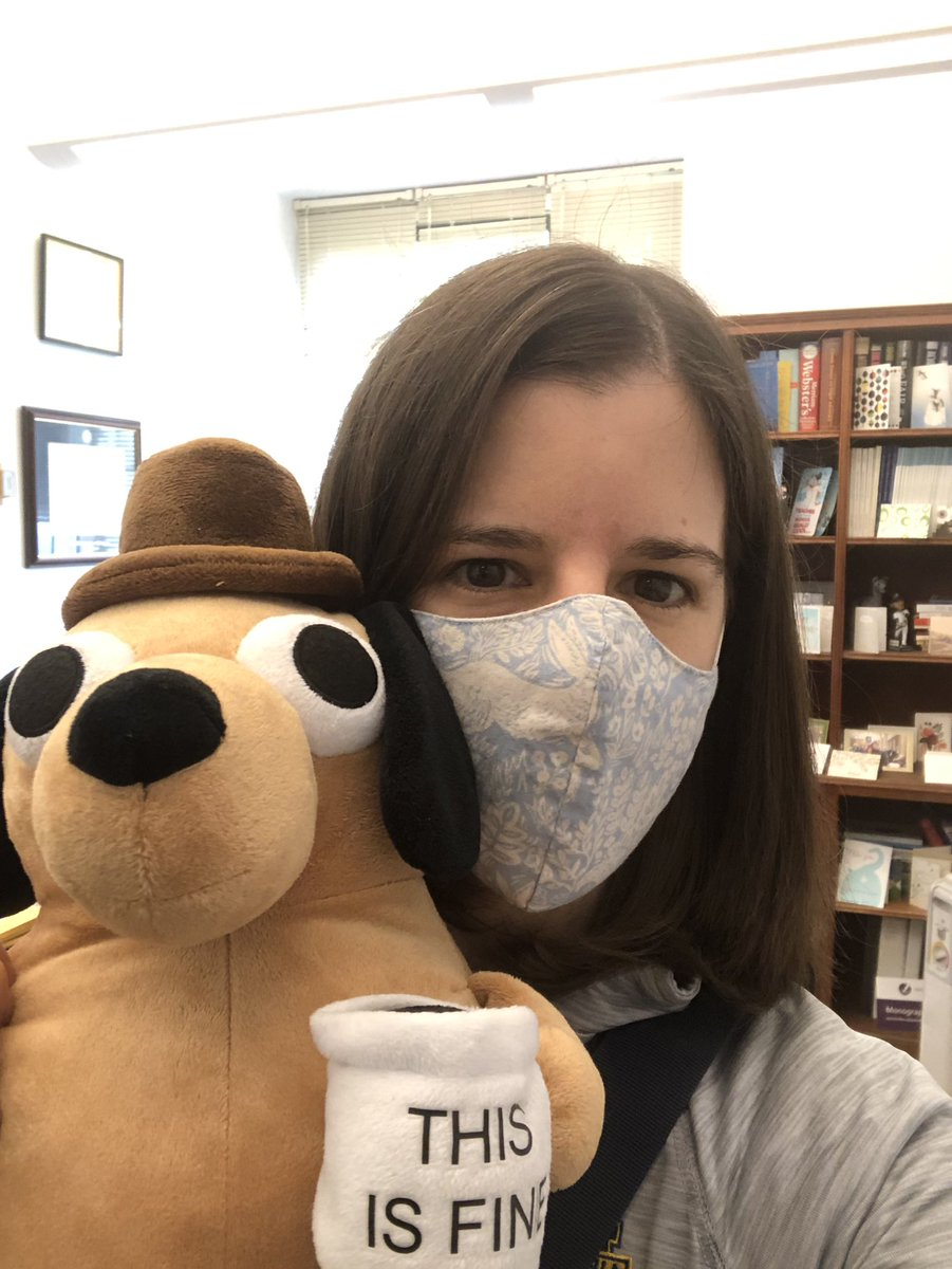 This Is Fine Dog Stuffed Animal, Margaret Hannon On Twitter Stopped By My Office So I Could Bring This Is Fine Dog Home