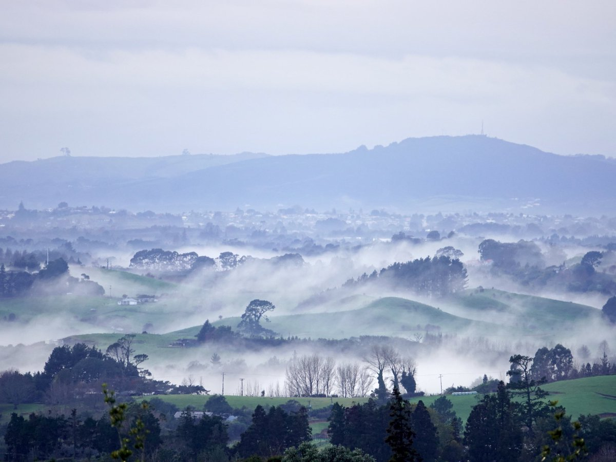 Low cloud / mist / fog? Over #Aongatete this morning #BayOfPlenty