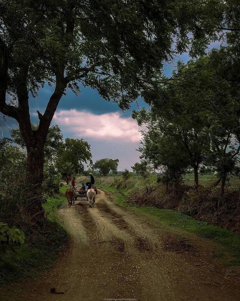 Rainy day  . Credit - @darpanagrawalphoto  . #indorenagari #indoriartist #rammandir #thehouseofcamera #darpanagrawalphotography #indianphotography #streetphotographyinternational #theuncommonbox #photographers_of_india #yourshotphotographer #i_hobbygraphy #everydayindia #m…pic.twitter.com/uAIdA5IPJB