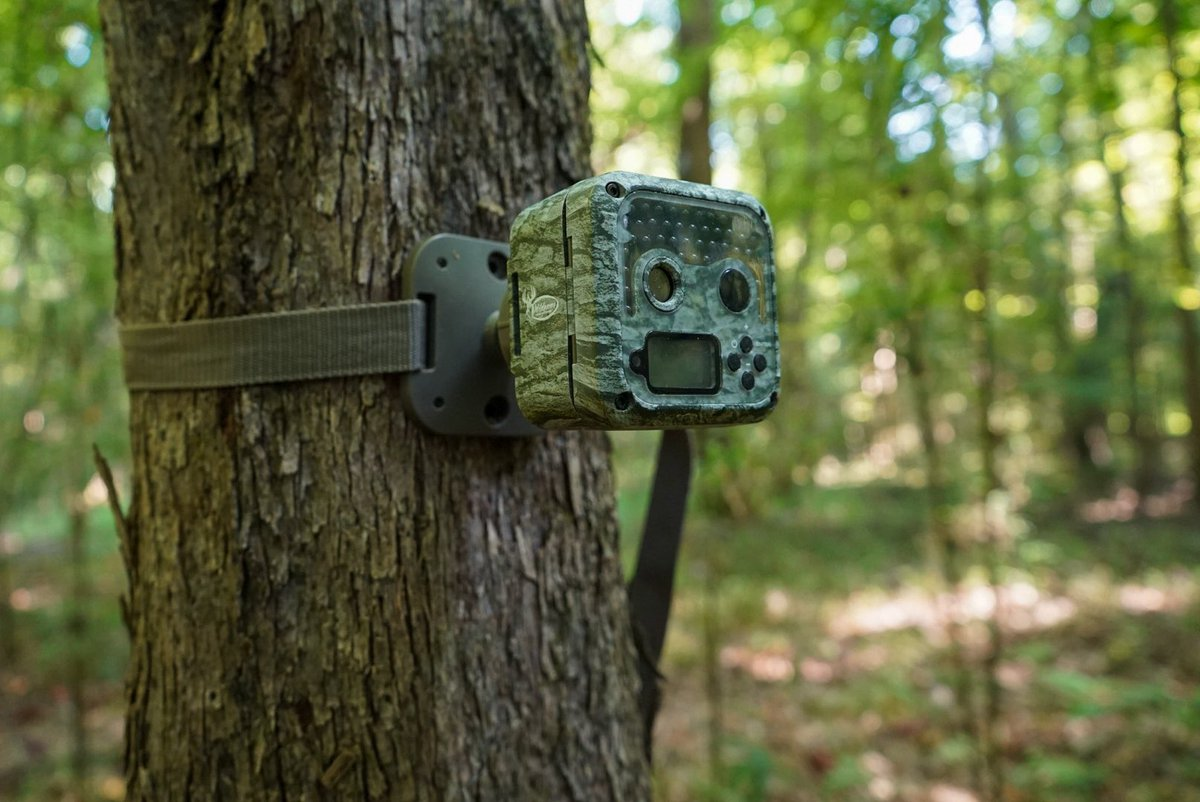 If you're on the hunt for a game cam then check out the @WGInnovations Shadow Micro Cam! The adjustable mounting strap makes it easy to hang on any tree or fence post and because of its small size it stays concealed. #NeverStopLearning #MajorLeagueBowhunter #WildgameInnovations