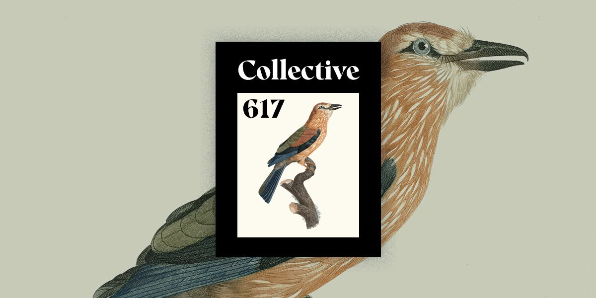 Web Design & Development News: Collective #617  content-visibility * Infinite Scroll without Layout Shifts * Brick * blogit * Understanding Arrow Functions  https://t.co/oB7GqOZhgS  #frontend #news #javascript #webdesign #css #webgl https://t.co/zwonsNol2x
