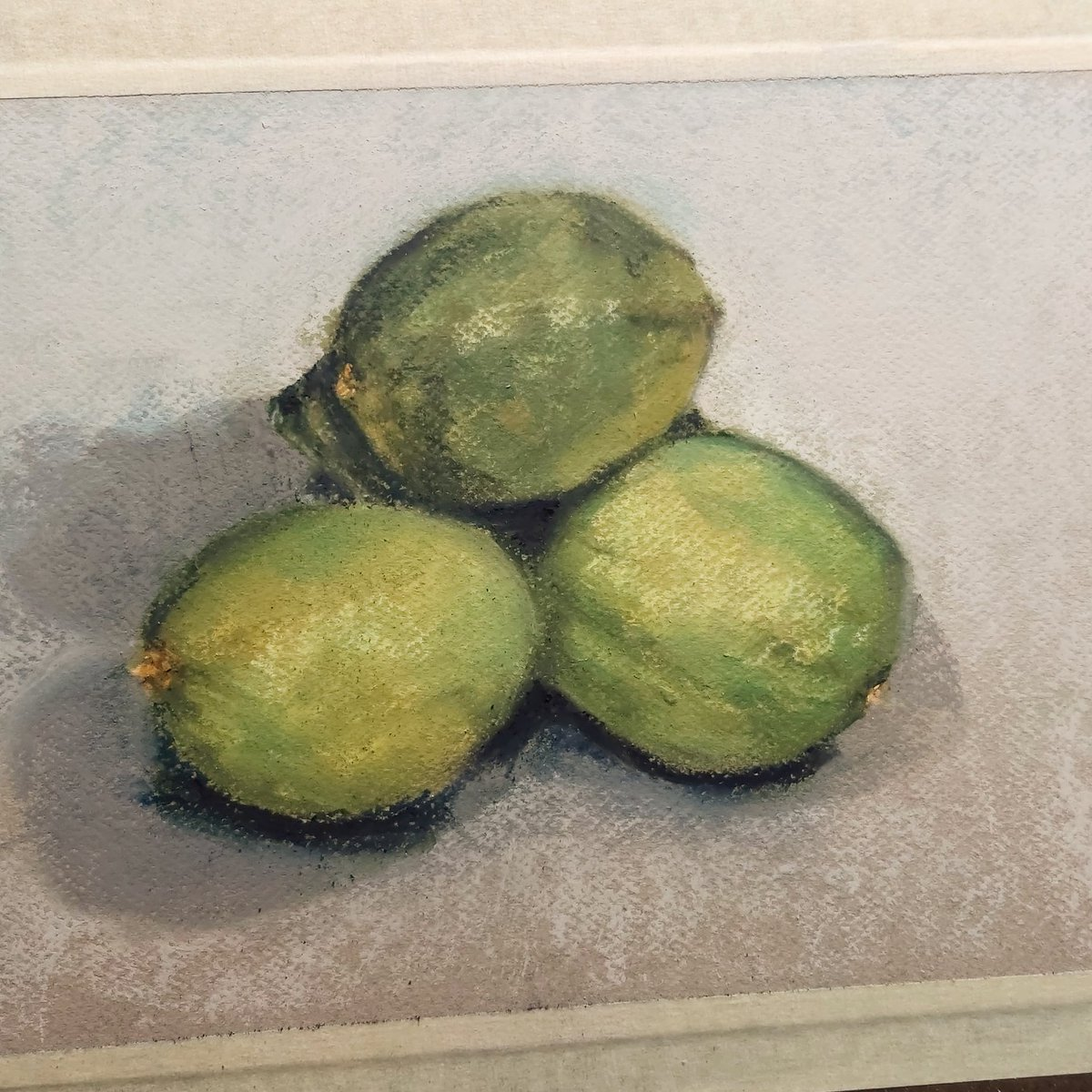 Today we have a few limes getting the #softpastel treatment  Please take a look at my #etsy store: http://etsy.com/shop/branhacker . #pastelpainters #pastelpainting #art #artwork #creative #sketchpainting #stilllife #stilllifepainting #foodpainting #paintingoftheday #artprintpic.twitter.com/XV3qsMOzSk