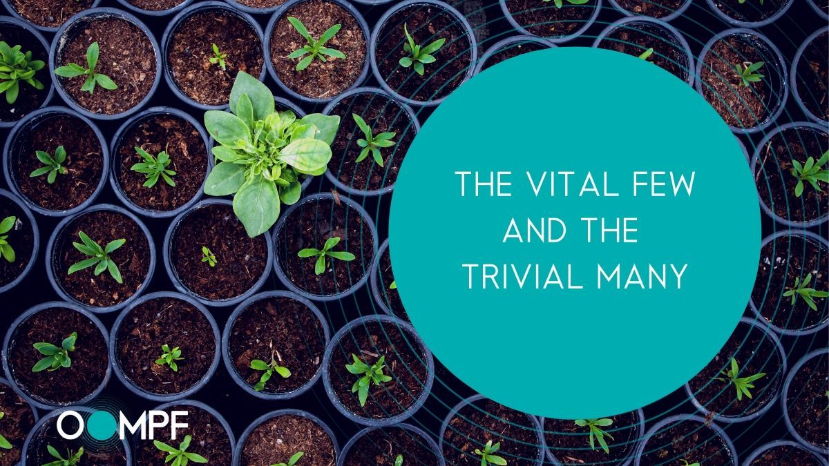 Some businesses are VITAL. Others, not so much....    Discover what makes a VITAL accounting firm here: https://t.co/mSE6Qsi55d    #SuperpowersForAccountants #Marketing #Accounting #CPA #Accountant #RelationshipsFirstSalesSecond #MarketingWithOompf #VITAL #PracticeGrowth https://t.co/9lgZlZdmYR