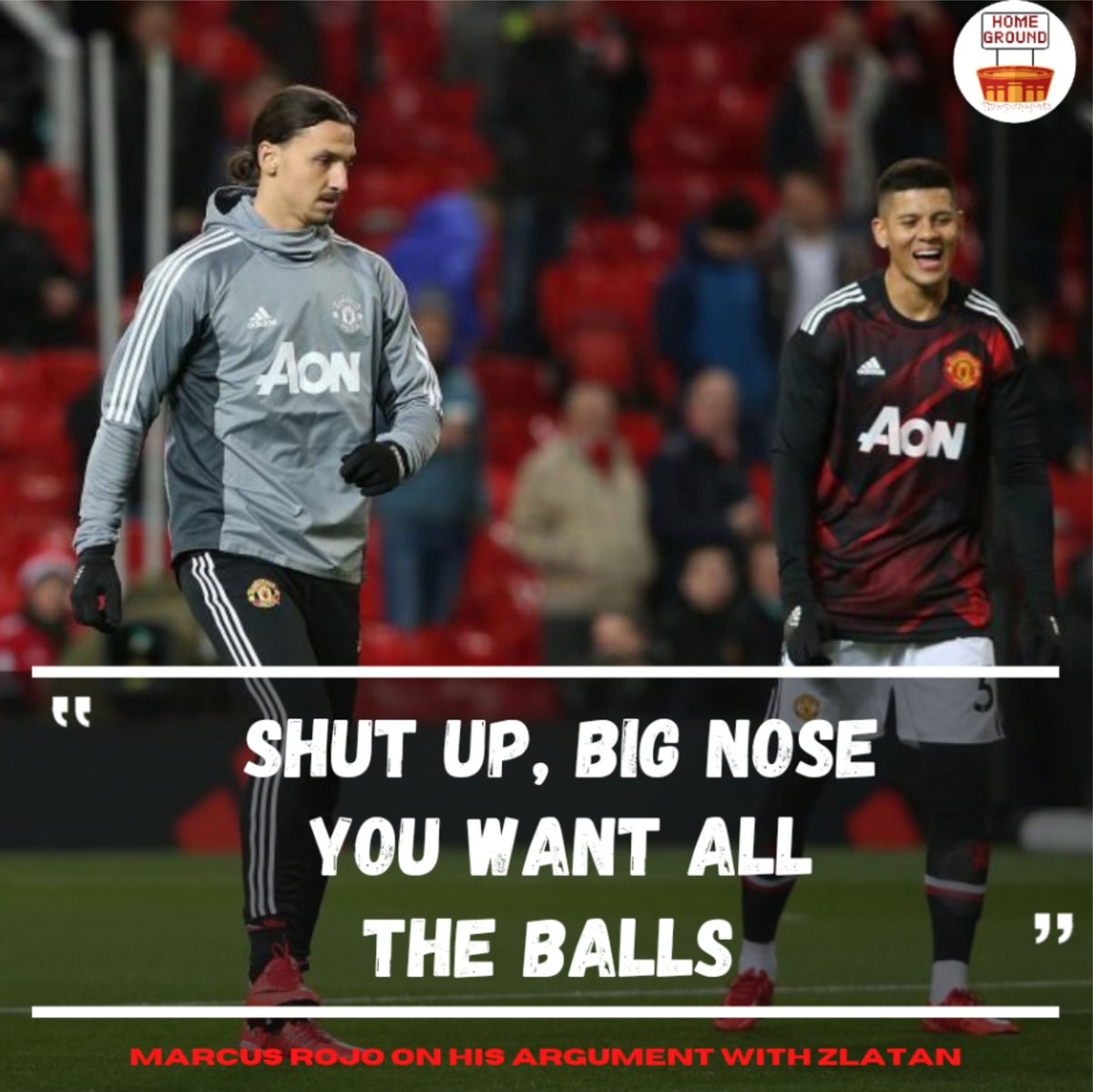 When Manchester United Defender Marcus Rojo decided to fight a Lion.  #manchesterunited #manunited #footballfunny #homeground #insta #soccer #futbol #troll #PL #premierleague #zlatanibrahimovic #zlatanpic.twitter.com/1Kykrp71Ul