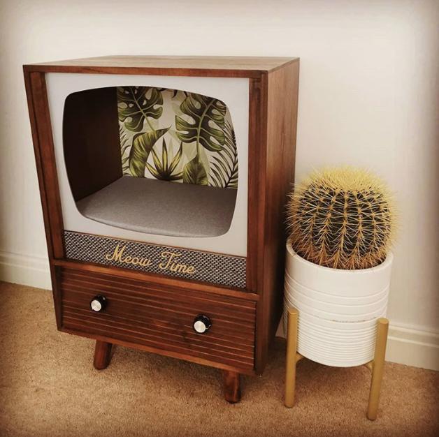 把舊式電視改造成貓的床 EexmTANU0AA9uF8