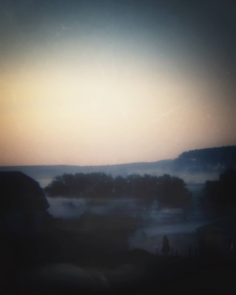 Mer de brume.  Août 2020  #instagood #picoftheday #photooftheday  #color #all_shots #exposure #composition #focus #capture #photography #portrait #landscape  #contemporaryart #treeoflife #alone #sunrise #mystery #surrealism #belgianardennes #belgianlandscape #belgium #nature…pic.twitter.com/dH9LP40i82