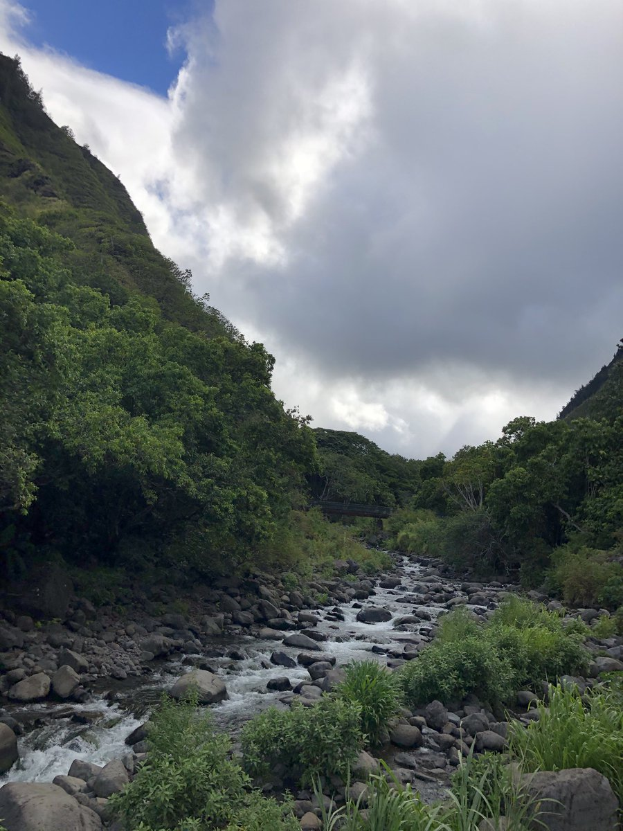 test Twitter Media - Partly cloudy and cool in Iao Valley. #CMWeather #Maui #Iao #Mauinokaoi #StreamFlowing https://t.co/kbKCemK9NR