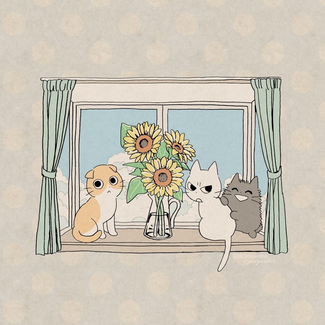 夏の窓辺の しかるねこ と あまやかすねこ と ながめるねこ。(壁紙サイズの画像も用意したのでよかったら使ってね!)