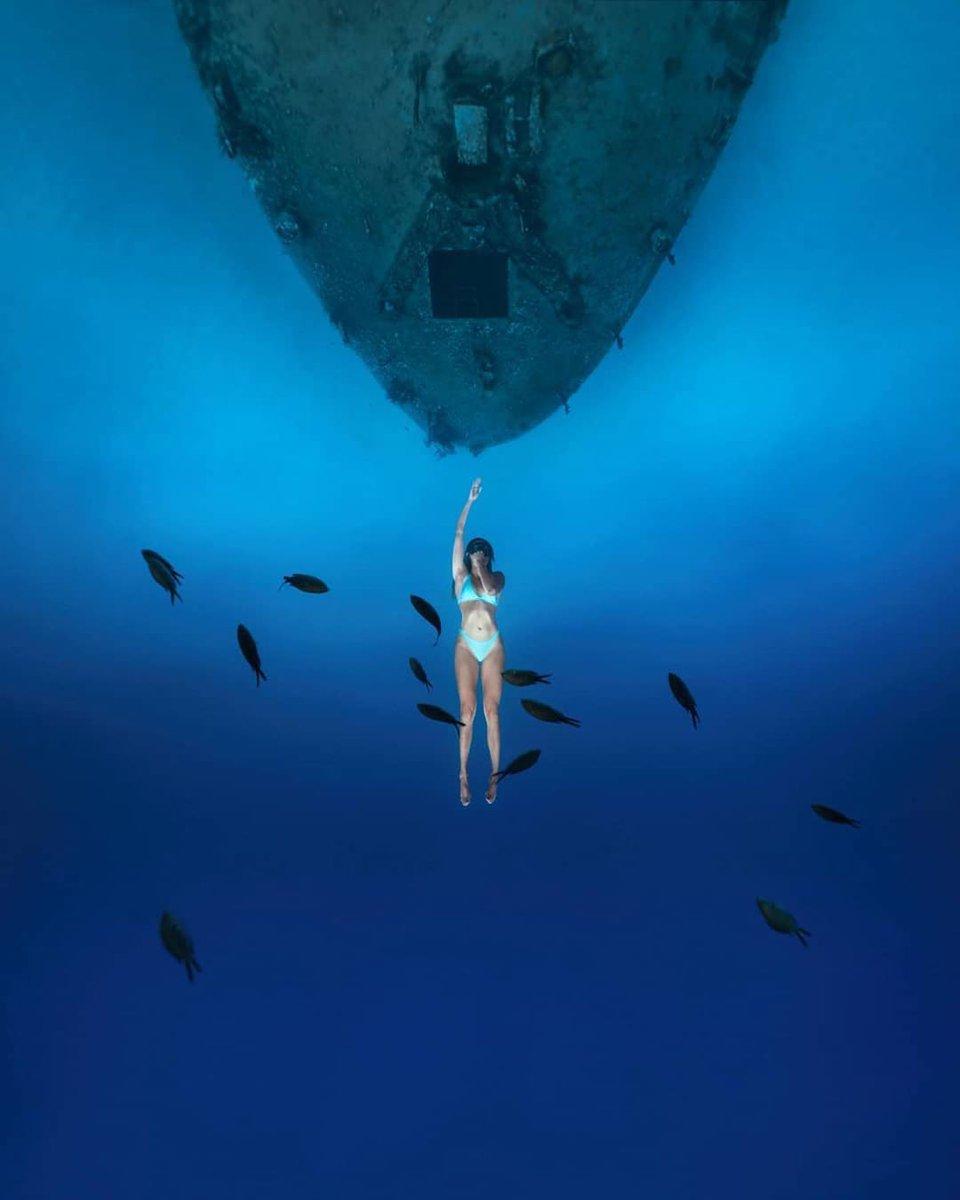В бездну Into the blue. https://instagram.com/p/CDktpFbJuRP/ #shipwreck #wreckdiving #oceanholiclife #bluuespace #freedivingart #freediverlife #padiwomen #sonyalpha #sonyunderwater #depthobsessed #spotmydive #roamtheocean #roamtheplanet #exploretheocean #freedivingpic.twitter.com/1EbWQxXn4G