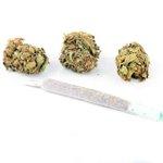 Image for the Tweet beginning: #cannabis #weed #marijuana Potential Tillsonburg