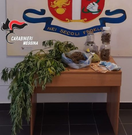 Mini serra di cannabis in casa, ai domiciliari un 32enne nel Messinese - https://t.co/QJAdlpX2q6 #blogsicilianotizie