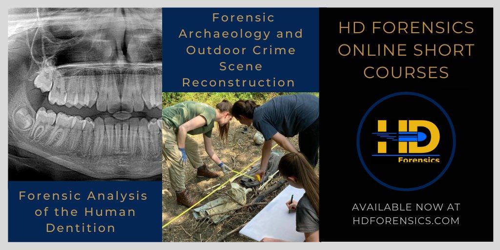 Hd Forensics Forensics Hd Twitter