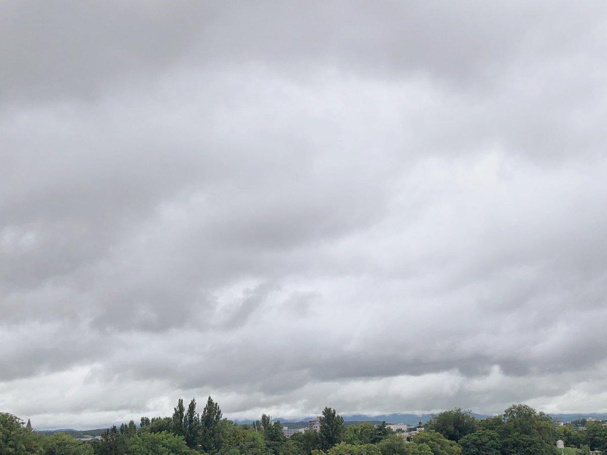 おはようございます雨がぽつほつ☔︎掃除機をかけたら暑い暑い、汗だくですでも予想最高気温は23度のようで涼しい一日になりそう今日も優しいきもちで過ごせますように🌿smile にーん☺︎*#おはよう #雨ふり