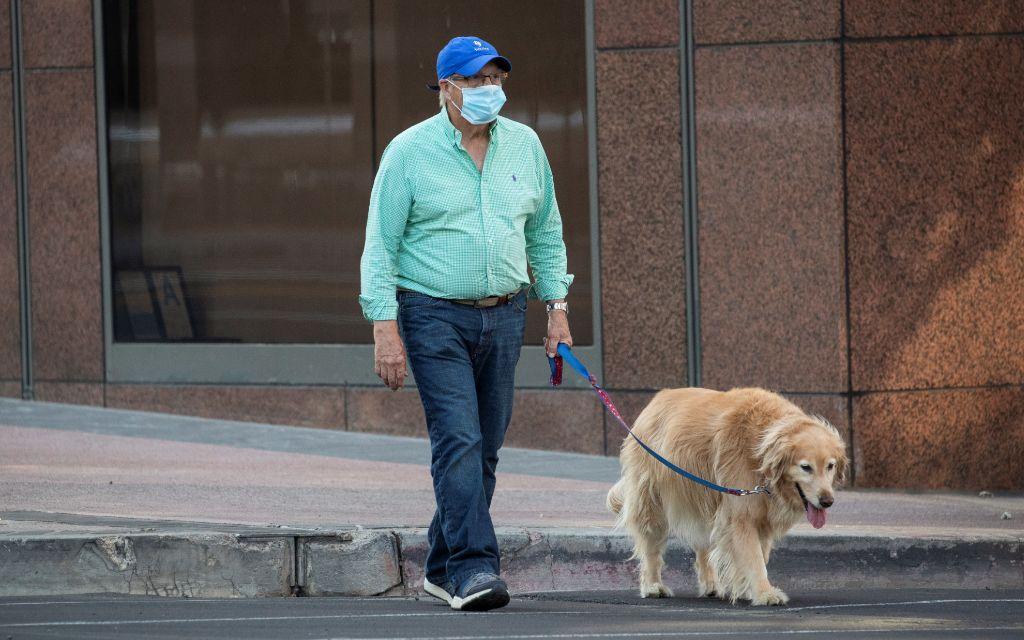 Paseo de perros obligatorio en Alemania de acuerdo a investigaciones científicas