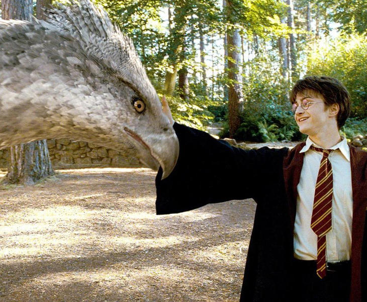"""Capa͛ Invisible ⚯͛ 🎃 on Twitter: """"Para celebrar el #BackToHogwarts El 5 de Septiembre @AndresN4VY y yo vamos a ser los hosts de la watch party del wizarding world de Harry Potter"""