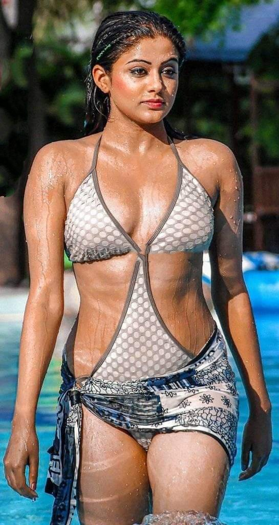 Hot Sexy Telugu Tamil Actress Bikini Pics Swimsuit Photo Gallery