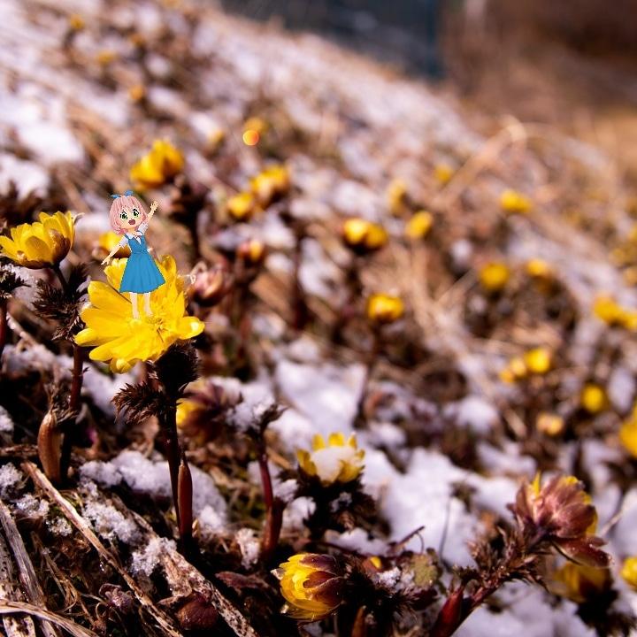おっはようございまーす! 昨日、季節違いの冬のASMRだそうとして音作って、画像作ろうとしてたら、すずちゃんのモデルが寒そう過ぎて一旦手を止めました(*・ω・)ムム! #セシル変身アプリ #雪解け #素足は寒そう https://t.co/5eUWp1LJkA