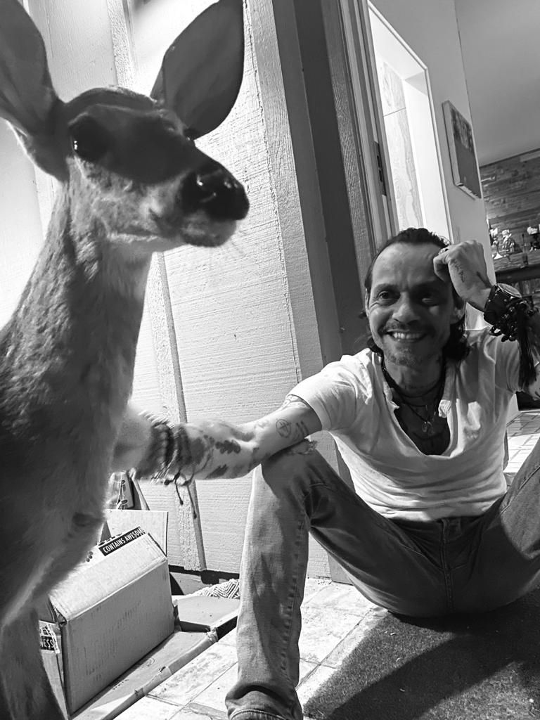 Replying to @MarcAnthony: Sending love and good vibes from  #Bamboo and I 🙏🏻