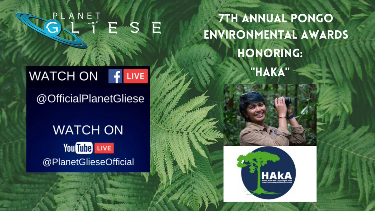 Have you celebrated International Orangutan Day? If you missed the 7th Annual Pongo Awards, you can watch it on Planet GLiESE YouTube page. The Orang Utan Republik Foundation honors individuals for their achievement.⁠ #PlanetGLiESE #Orangutan #OrangUtanRepublik @haka_sumatra https://t.co/gkEU3etwfG