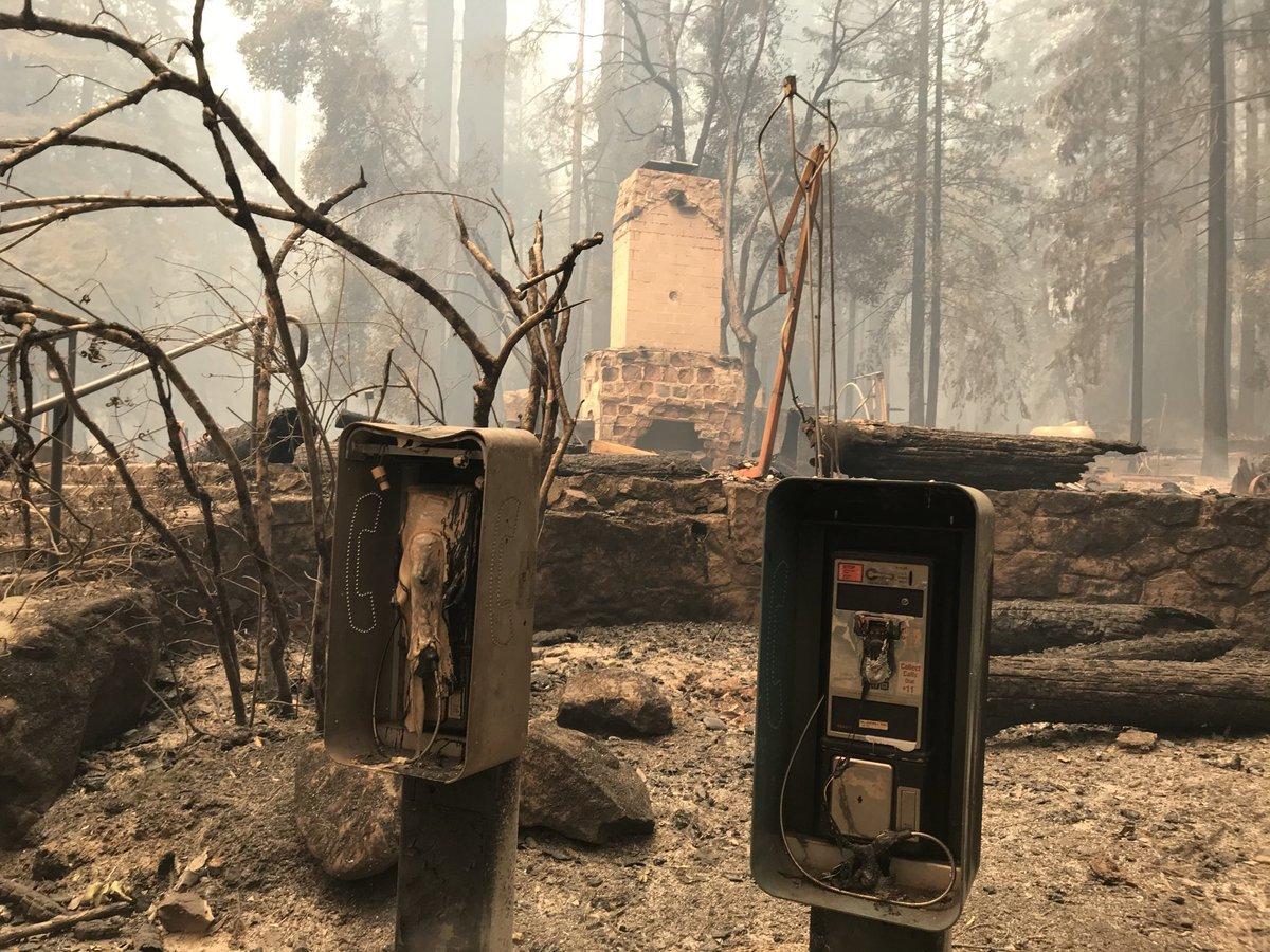 Replying to @ethanbaron: Big Basin Redwoods State Park HQ