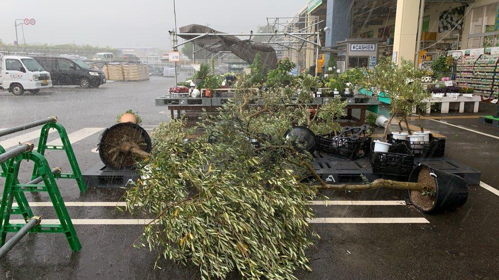 大阪市でゲリラ豪雨が降っている画像