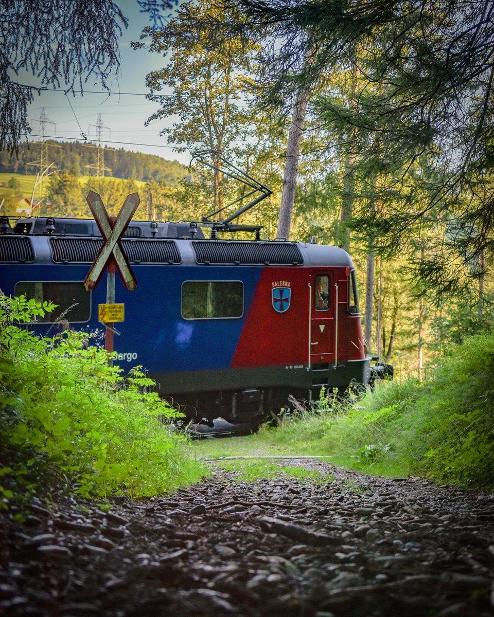 So, verlassene Ecken des helvetischen Schienennetzes...  (Und dreckige Linsen...) https://t.co/Sguwe9WlFO