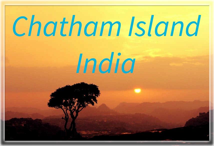 Chatham Island is an island of the Andaman Islands. . Photo courtesy-Pinterest #ChathamIsland #India #AndamanIslands #travel_journey #traveljourney #naturelover #enjoying #beautifulworld #closetothenature #travellover #travelseeker #blessedworld #godscreation #admiringnature https://t.co/nVWCglE6eN