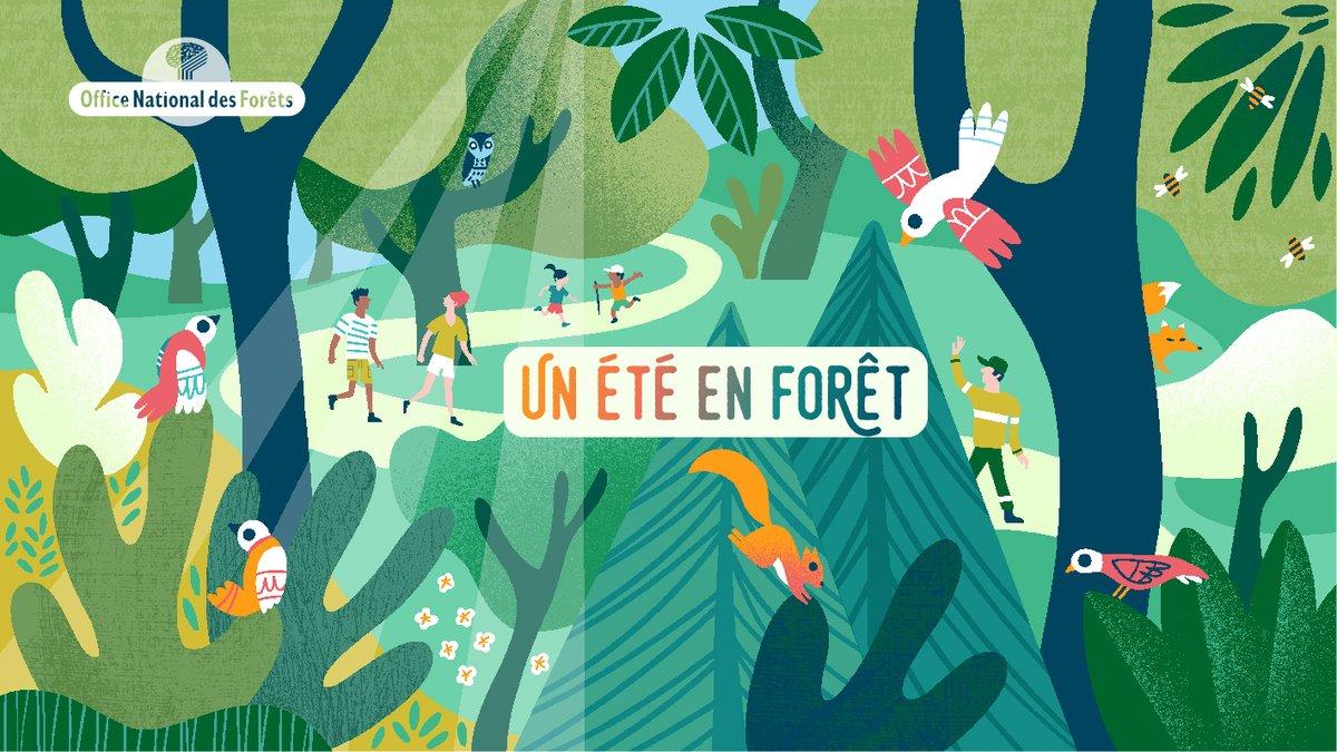 🌲 Avec l'@ONF_Officiel, participez près de chez vous à des animations estivales en #forêt ! 🔎 Des activités ludiques et pédagogiques pour découvrir la forêt autrement : visites guidées, jeux de piste, concours photos...  👉 https://t.co/0Bsce0RTsX  #ODD #ODD15 #Biodiversité https://t.co/5i3sxjU3fi