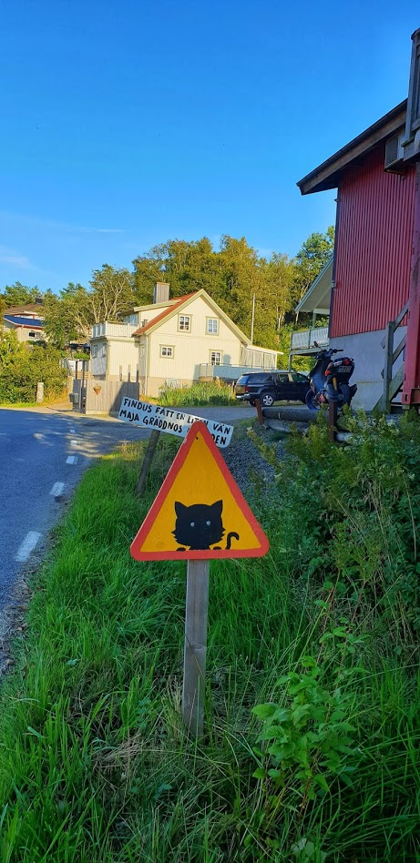 "In the same area there's also this lovely cat warning sign.  Behind it the other sign says ""Findus fatt en liten vän Maja gräddnos heter den"" / ""Findus got a little friend It's called Maja cream nose""  I like the humour of those there who make the signs.  #Övernön #Sverige #Catspic.twitter.com/JADDPjRbHs"