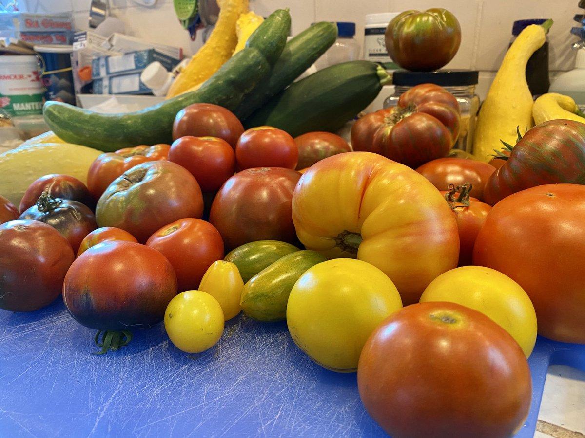 Bountiful heirlooms ❤️#sundaynight #gardening #veggiesaregood
