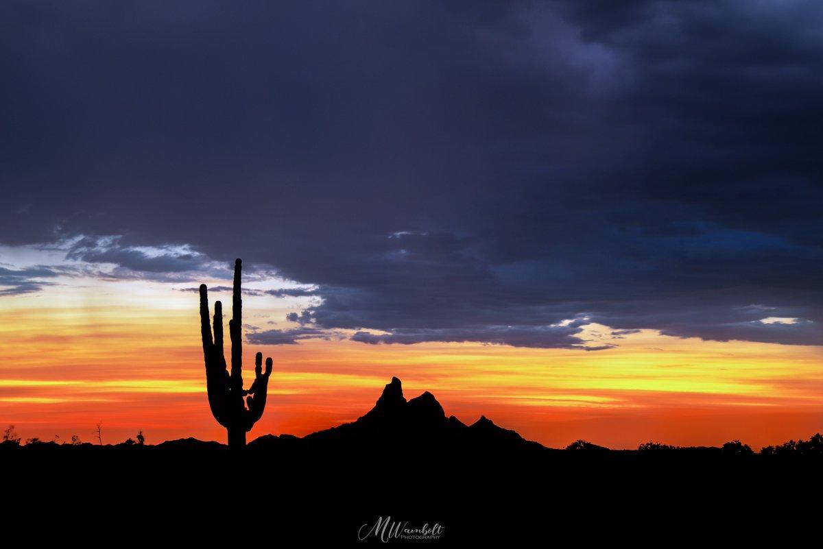 Classic AZ sunset #sunset #arizona #photography #naturelovers pic.twitter.com/2LuPilEL9L