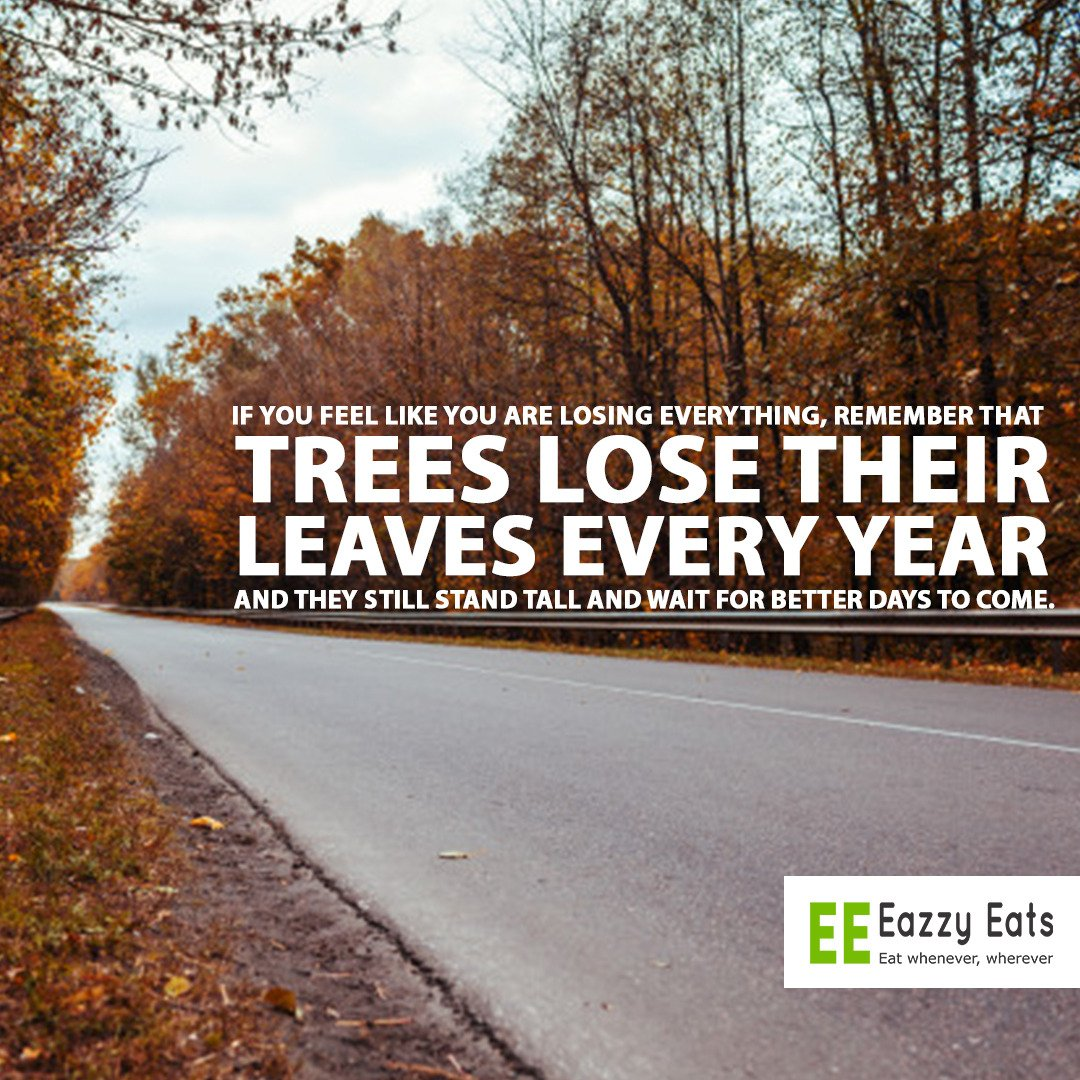 If you feel like you are losing everything ,remember that trees lose their leaves every year and they still stand tall and wait for better days to come. Dont give up!!! #newweek #mondayvibes #motivation #EazzyEats #dontgiveup #foodblogger #onlinefood #delievry #onlinefooddeliverypic.twitter.com/1WbSJQATDD