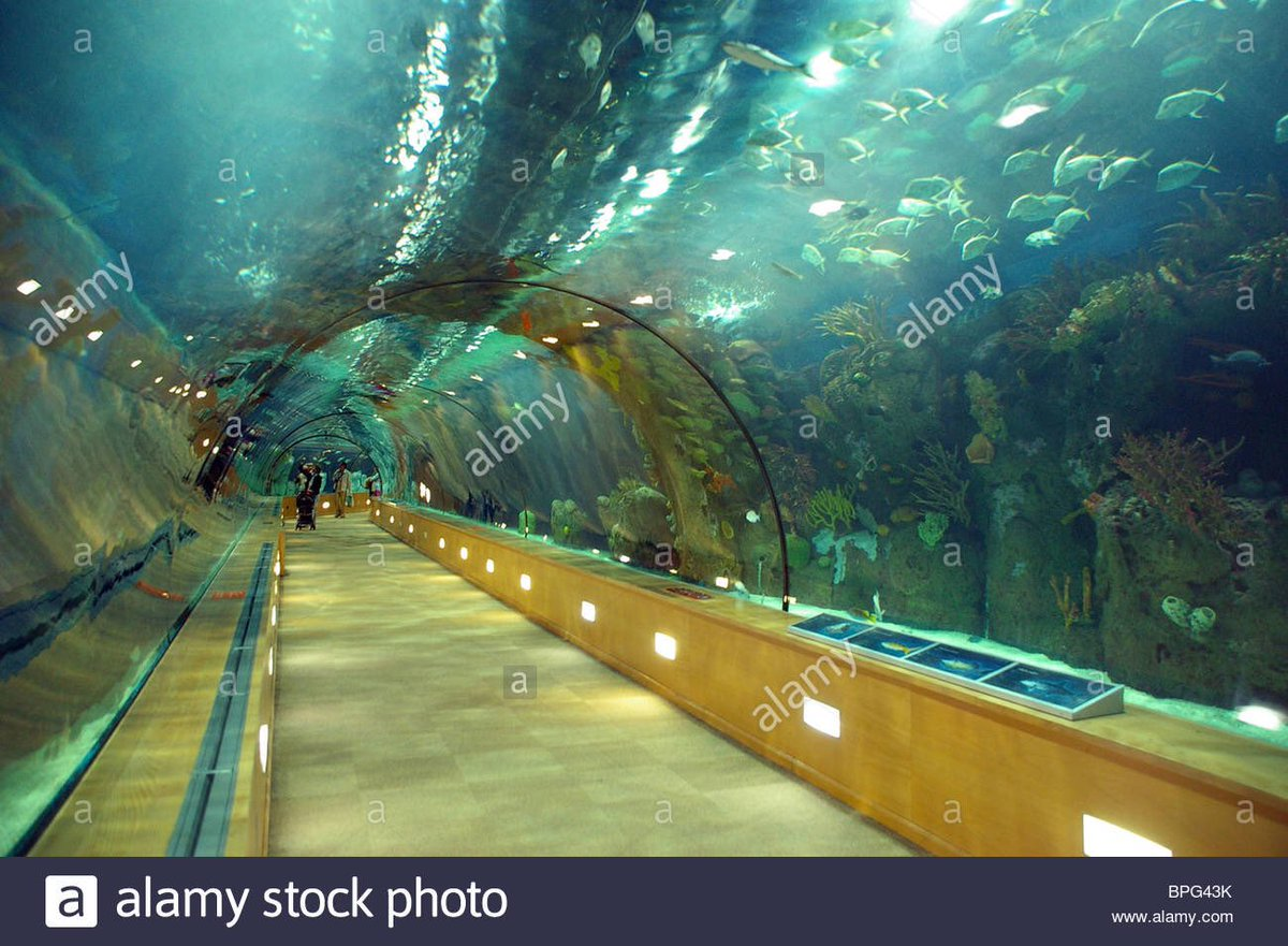 #tunnel