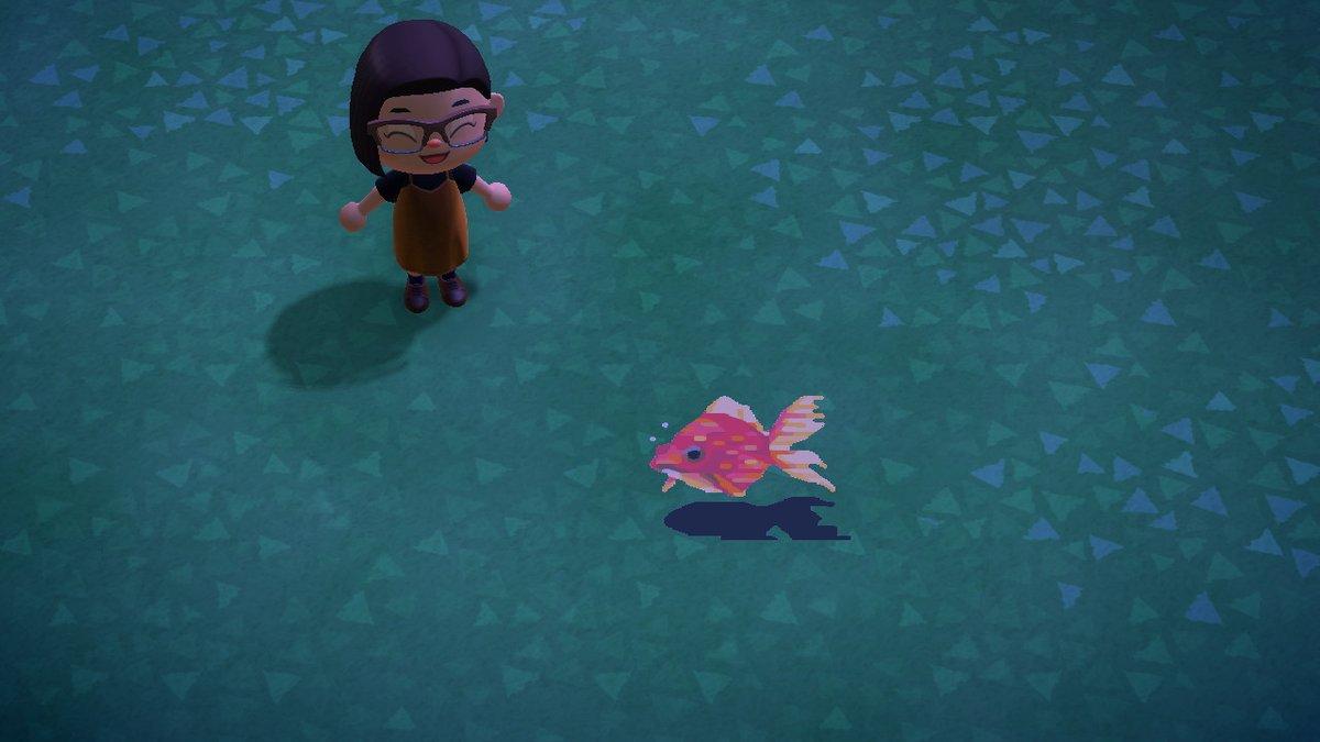 金魚のマイデザインです♪どうぞご自由に使ってください♪#マイデザイン#マイデザイン配布#金魚#どうぶつの森 #AnimalCrossing #ACNH #NintendoSwitch