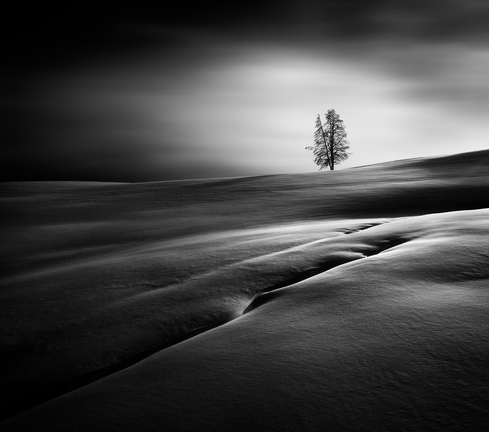 """Solitude"", Yellowstone National Park, USA Photo by by Huibo Hou"