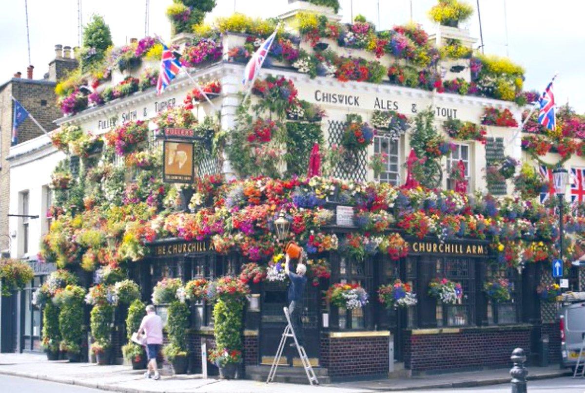 """#密 """"The Churchill Arms"""" #Pub #London #GreatBritain@Britanniacomms http://etsy.com http://thehandbook.com (RT) #density #dense #flowers #hanging #baskets #plants #architecture #decor #Christmas #ideas #photography #awesome #StaySafe #COVID19 #Coronaviruspic.twitter.com/4YVc1OHyfp"""