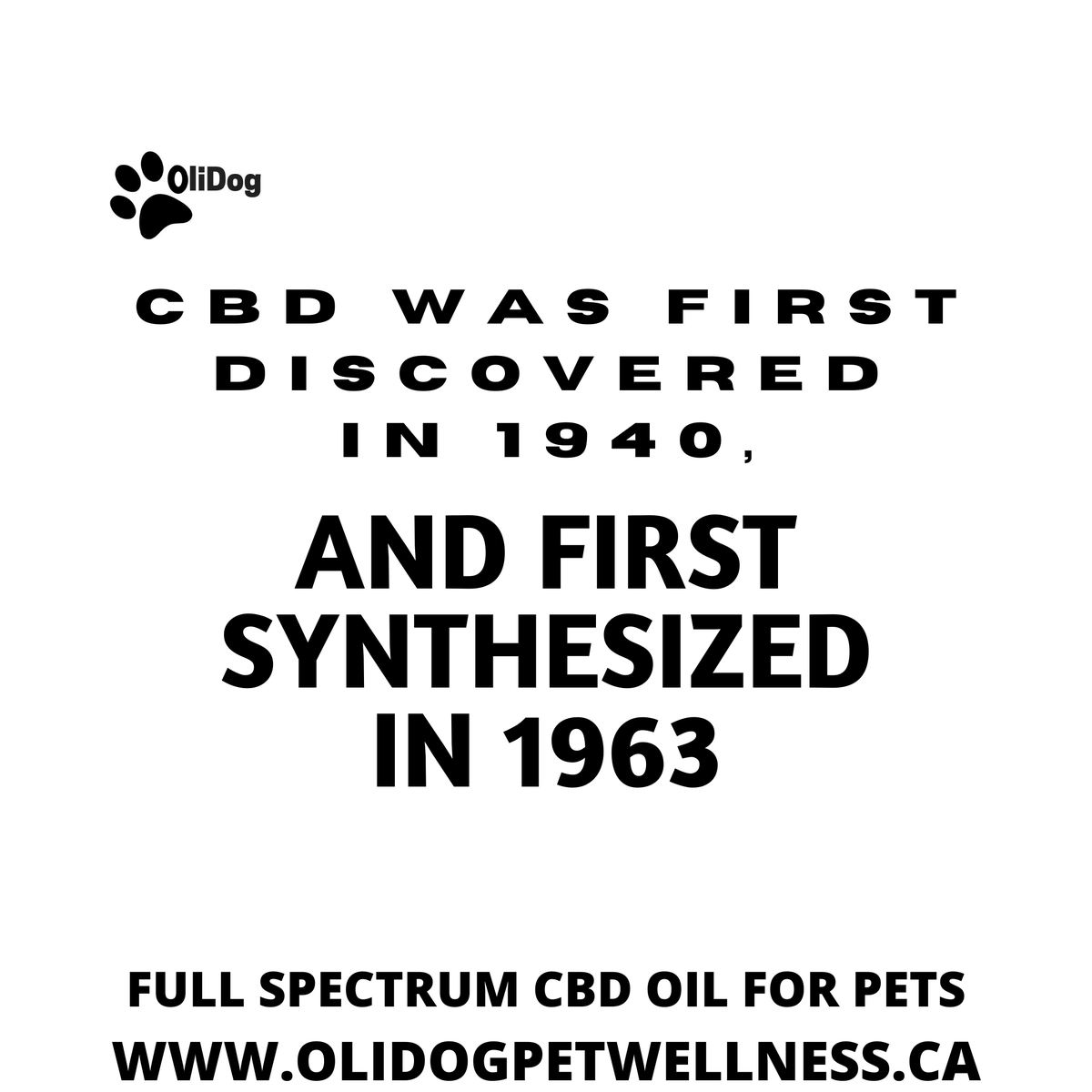 Here's some #MondayThoughts! Did you know? Though evidence of cannabis consumption by humans dates back thousands of years, #CBD was not isolated until 1940 by the chemist Roger Adams, and its chemical structure wasn't clearly defined until 1963 by Raphael Mechoulam. #dogsofinsta pic.twitter.com/PgH3CfWRJJ