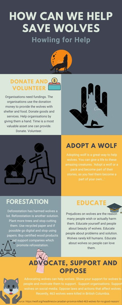 I did my infographic on solutions to help and save wolves. #39canimals #savewolves #lovewolves pic.twitter.com/SpaQAY1WfC