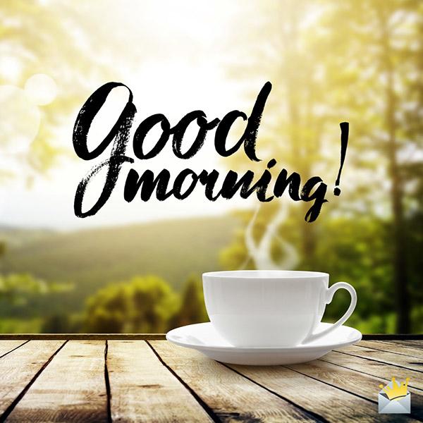 @BrendaBalazs @RosannaPhillip @Wipapa5 @phyllisj1003 @HarleyDad731 @LouGarza86 @William15199186 @blueheartedly @sawmcdargh @maxedge051 @OzenRhoda @CarlyJA22 @gggg45466 @BroxtonSpring @VonnieCalland @SARA2001NOOR @GulliAz @Missin_Florida Good Morning, Bren. Nice to see you this morning! 💙☕️💐😷