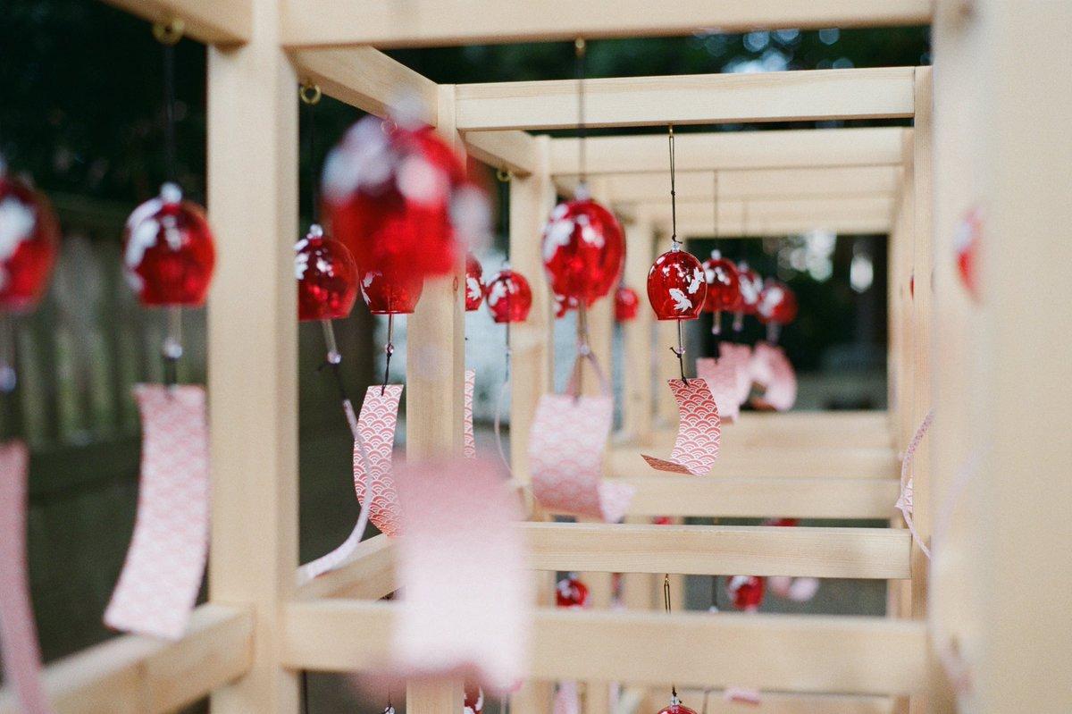夏音  #東京カメラ部 #tokyocameraclub  #kodak #filmphotography #film #streetphotography #snapshot #streetsnap #フィルム写真 #スナップ #フィルムカメラ #フィルムカメラに恋してる #フィルム写真普及委員会 #pentaxpic.twitter.com/nf7CrZ7oxD