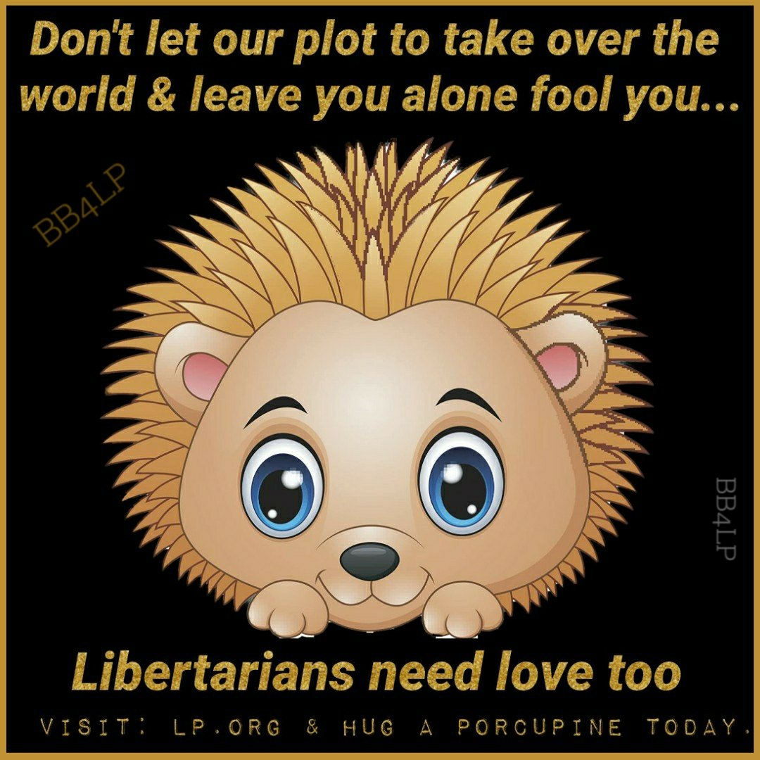 #Libertarians may seem pokey when trying to get their point across. But that's just their passion for freedom. Not just for Libertarians, but for all Americans. #BeBoldVoteGold #LetHerSpeak #EndTheDuopoly #VoteLibertarian #MondayMotivaton #VoteThemOut #JorgensenCohen2020 https://t.co/XFY1k7gsni