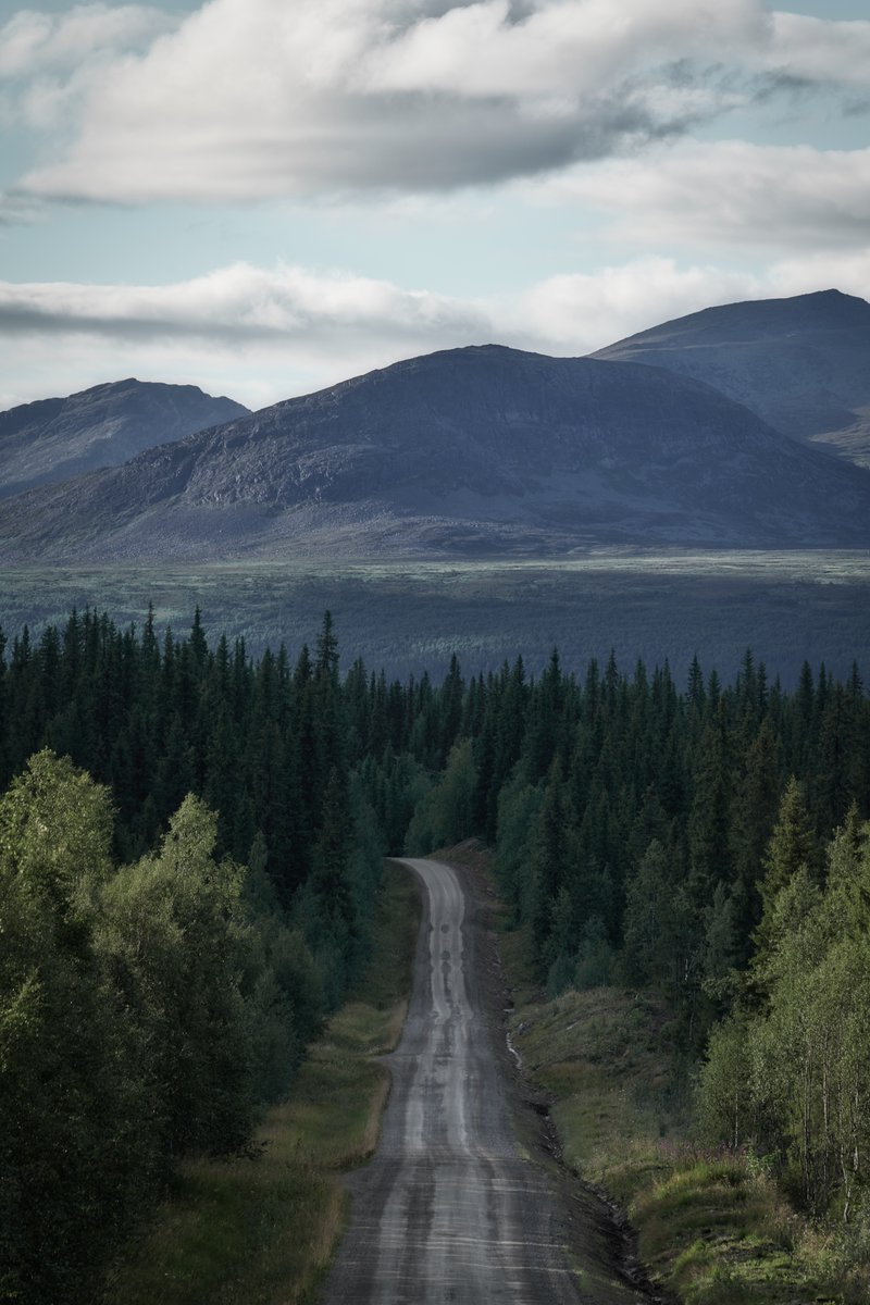 Road into the wilderness #Marsliden #Sweden #FromTheArchivespic.twitter.com/V1ANYjQD1P