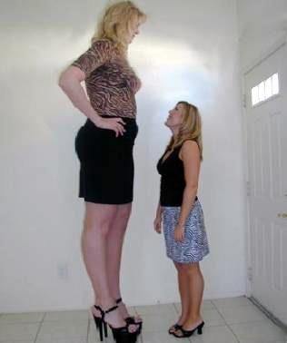 Lumi On Twitter How Tall Markiplier Feels In His Videos Versus How Tall He Feels In Real Life As far as numbers go, markiplier currently has 19 million subscribers, 7 billion views and has the 25th largest youtube channel. twitter