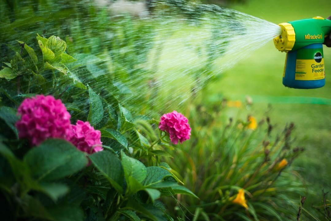 Nitrogen is an important nutrient your plants need. #garden #gardeningtips  http://cpix.me/a/102775097pic.twitter.com/otAEUzhszS