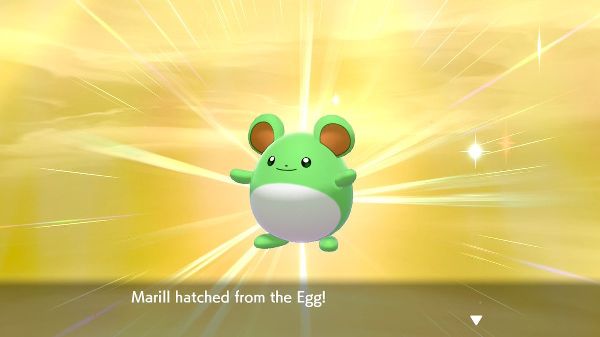 519 eggs for my second favourite shiny - Azumarill ! I love this mon so much ! #PokemonSwordandShield #shinypokemon #shinyhunter #pokemonshieldpic.twitter.com/vXnEVUswkM